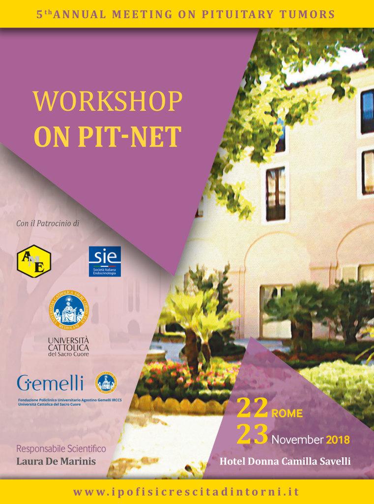 Workshop On Pit-Net_Novembre 2018